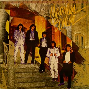 hogHatt (1)1980