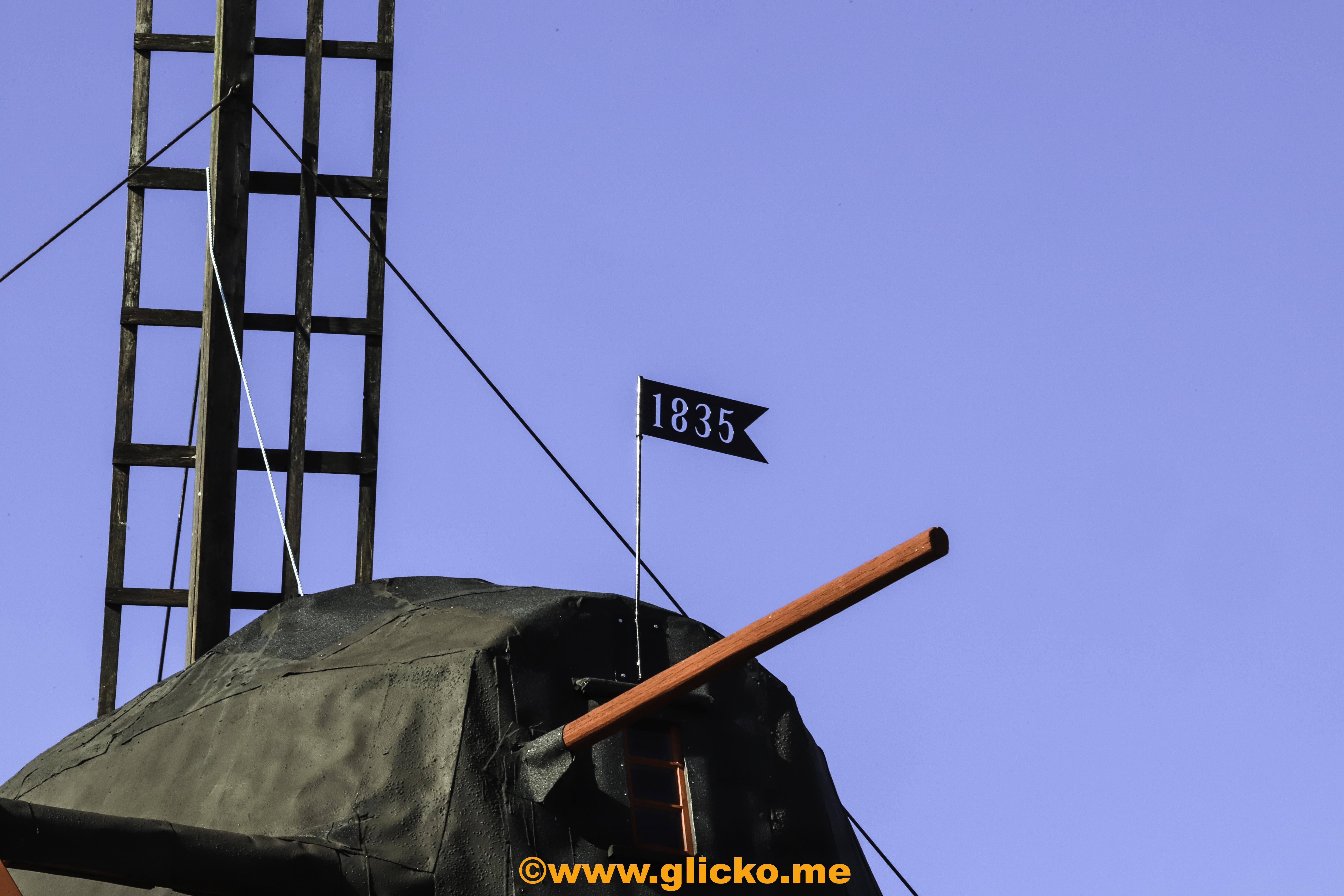 IMG_8994.jpg